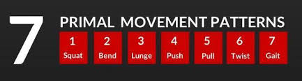 7 Primal Movement Patterns